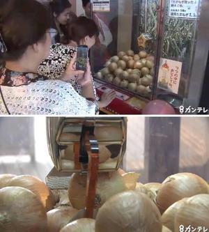 関西テレビ | 関西のニュース | たまねぎキャッチャーが紹介されました。
